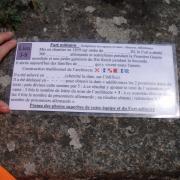 Chausey 12
